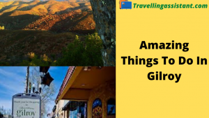 Things to do in gilroy and morgan hill