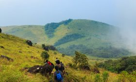 Tadiandamol Trek-A Perfect Detailed Guide