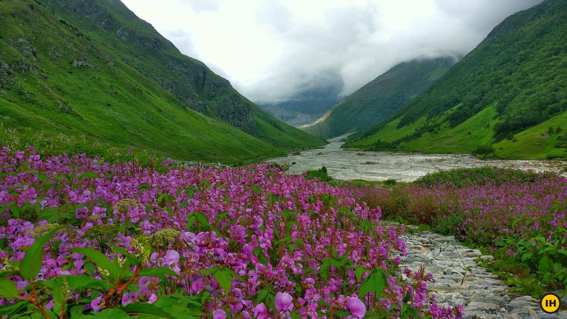 Valley of Flowers Trek - Explore the stunning valley of flowers